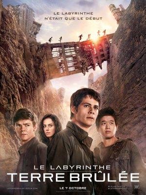 le_labyrinthe_la_terre_brulee1