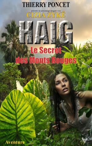 haig_le_secret_des_monts_rouges