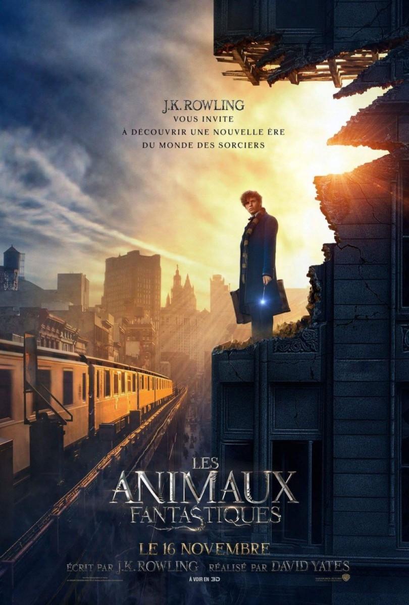 """""""Les Animaux Fantastiques"""" de David Yates - La chronique qui fait rugir de plaisir !"""