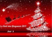noel_des_blogueurs_2017_jour_9